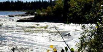 Palm Blogs: White water fun on dream wave in the wilderness of Manitoba