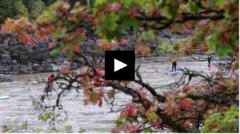 GrindTV: 'World of Adventure' braves the SUP scene in Jackson Hole, WY