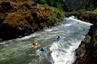Am. Whitewater: Join American Whitewater on the Wild and Scenic Rogue River (OR) in 2018