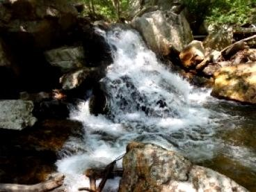 American Rivers: Release of the Final Clean Water Protection Rule
