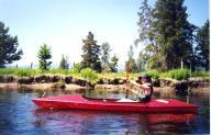 phoenix-poke-boats Poke Carbon Fiber
