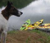 kayakclubvenezuela