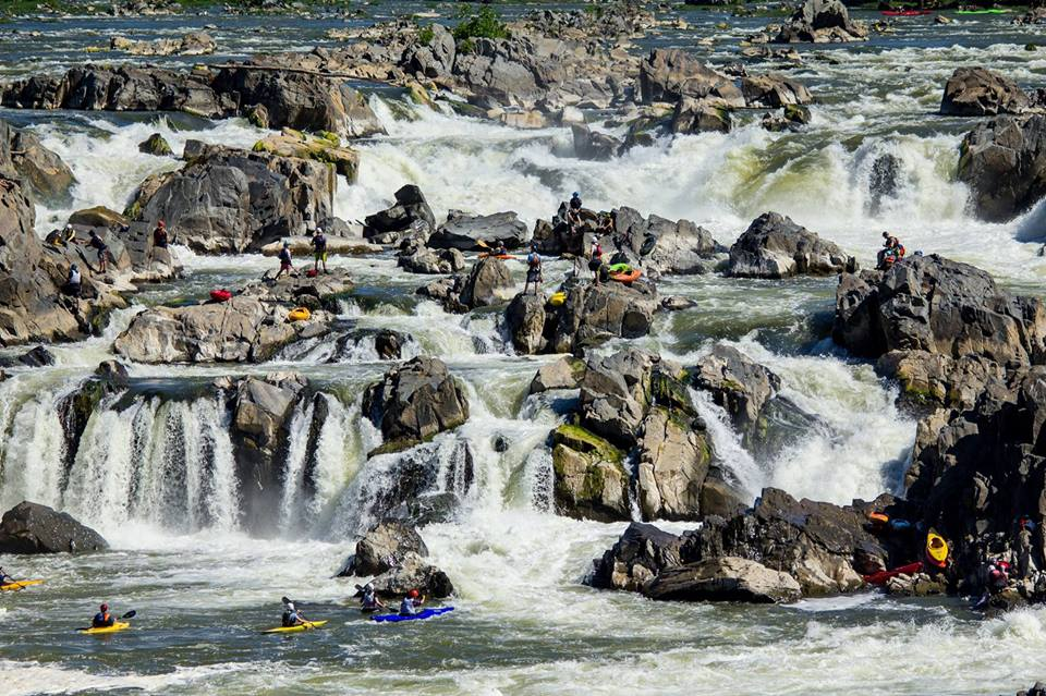 The Great Falls Race and Potomac Festival