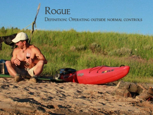 Rogue 9 - _roguedefinitionEJ_1316090221