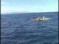 Kayak Sail Fish