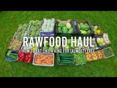 RAW FOOD HAUL - how to eat like a king for (almost) free on a raw vegan diet