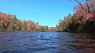 Relax and Unwind Paddle Boarding The Tahquamenon River